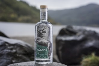 Lidl is launching its first own label Scottish craft Gin.