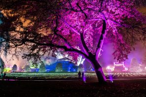 Tickets on sale for second GlasGLOW event at Botanic Gardens